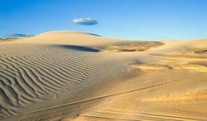 worimi sand dunes