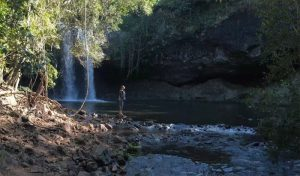 Wollumbin National Park, New South Wales
