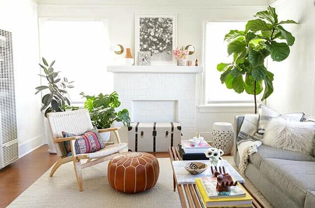 summer interior design with plants