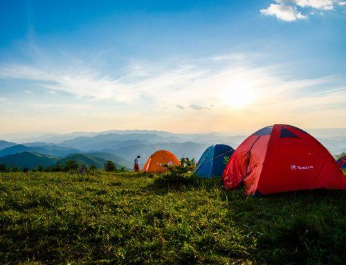 Best Camping Spots Near Murwillumbah